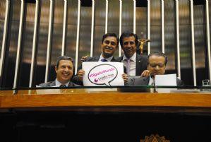 g n 243 3w1b - Folha de São Paulo: Câmara aprova lei que proíbe animais em testes de cosméticos