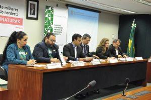 g n 265 6m3p - Blog do César Santos: Deputados vão criar lei que proíbe abate de jumentos no Brasil