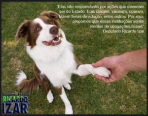 g n 476 7w4b 300x236 - Isenção de impostos para entidades de proteção animal
