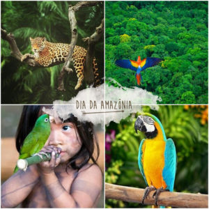 DIA DA AMAZONIA 300x300 - 05 de Setembro - Dia da Amazônia
